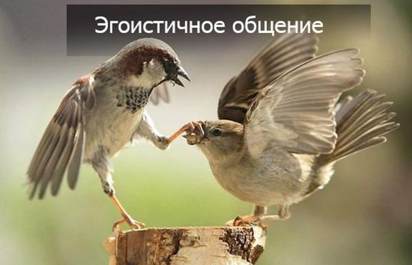 Эгоистичное общение