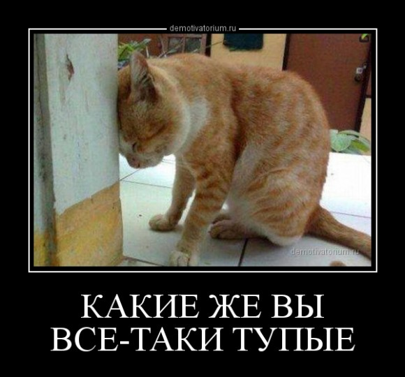 В России заблокируют соцсеть LinkedIn. Суд признал законным решение Роскомнадзора - Цензор.НЕТ 4415