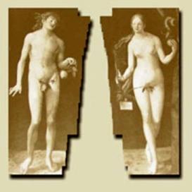 Мужчина и женщина ревизия отношений или Эволюция и революция Часть 1 Ревизия отношений