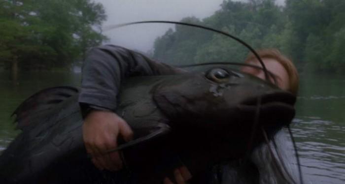 док фильмы про ловлю рыбы