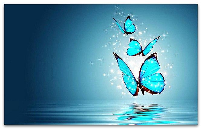 Сходство созревания бабочки и личности человека.