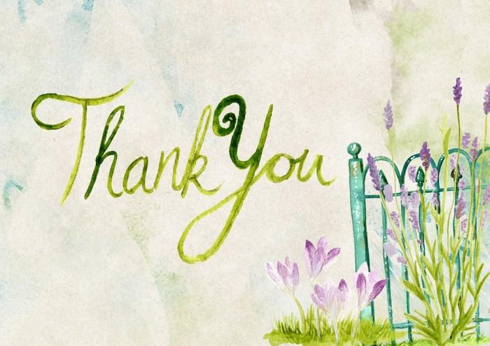 30 благодарностей