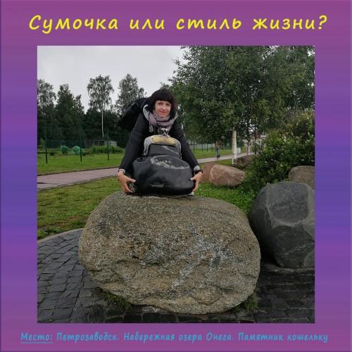 Сумочка или стиль жизни? (2)