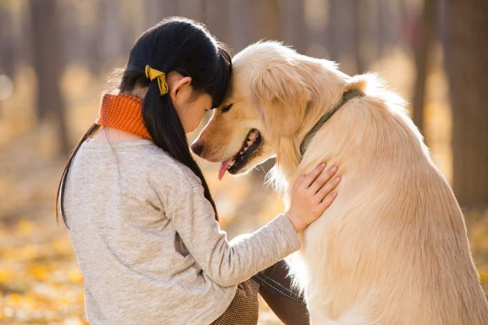 Возможные мотивы любви к животным (2)