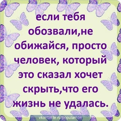 Обзывайся, хоть охрипни, ничего ко мне не липнет! (2)