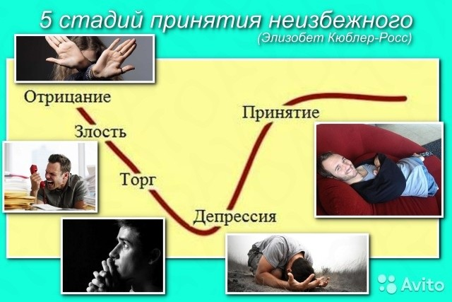 Краткая биография и фото склифосовского загрузиться