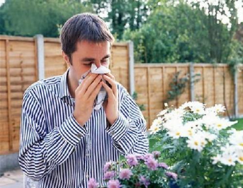 Гомеопатия при аллергии.