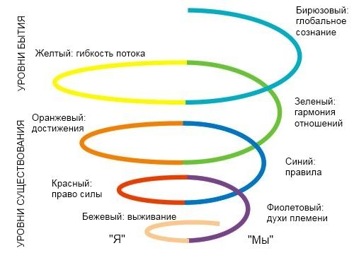 стадии организации