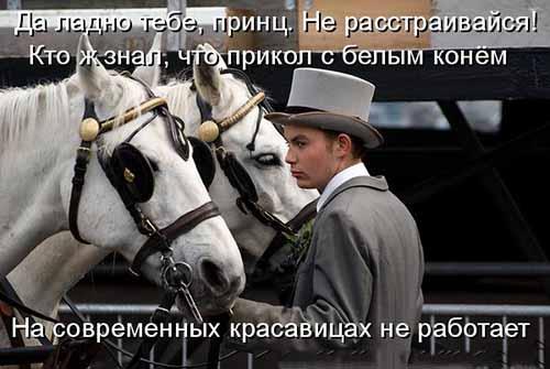 Почему так мало принцев на белых лошадях а вот козлы расплодились