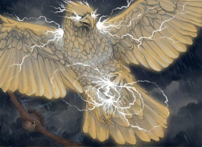 ночью картинки с птицей гром может произойти