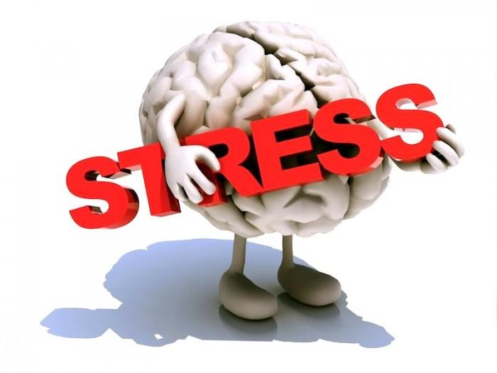 Стресс Виды стрессов