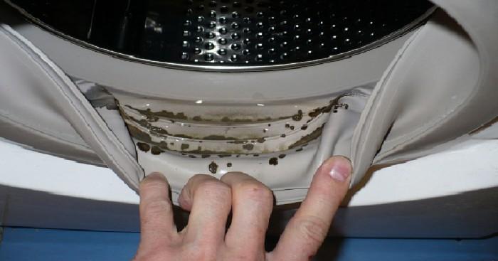 Машинка стиральная сломалась или почему люди не хотят замечать тараканов