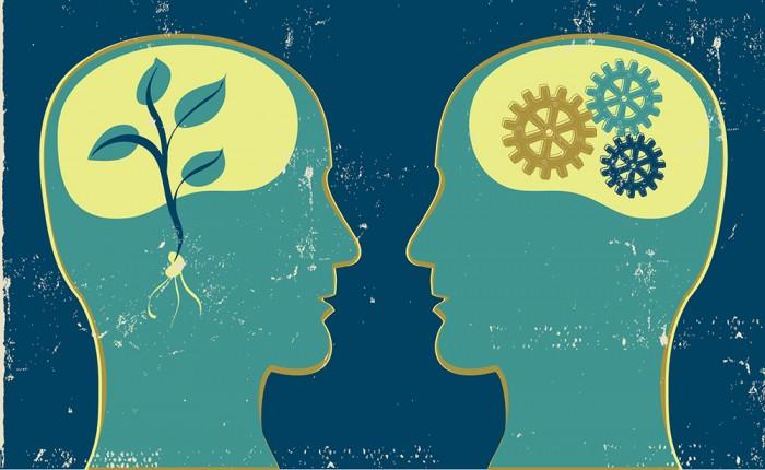 Терапия - любовь за деньги?
