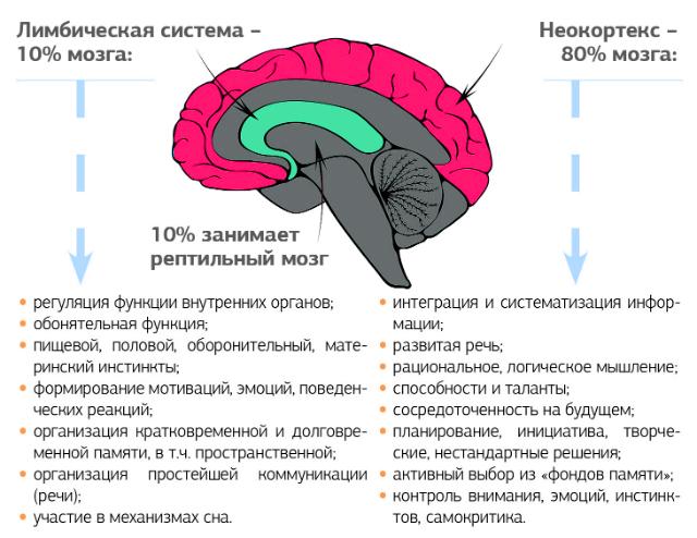 Как подружить мысли и чувства