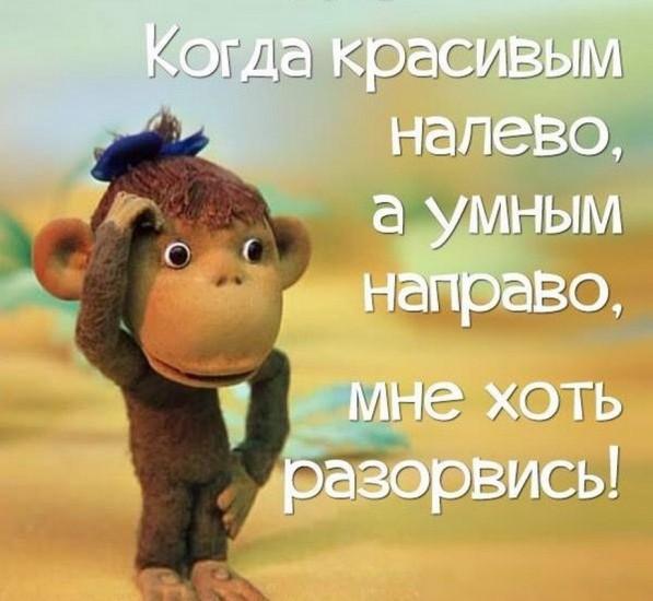 upl_1562224162_176853.jpg