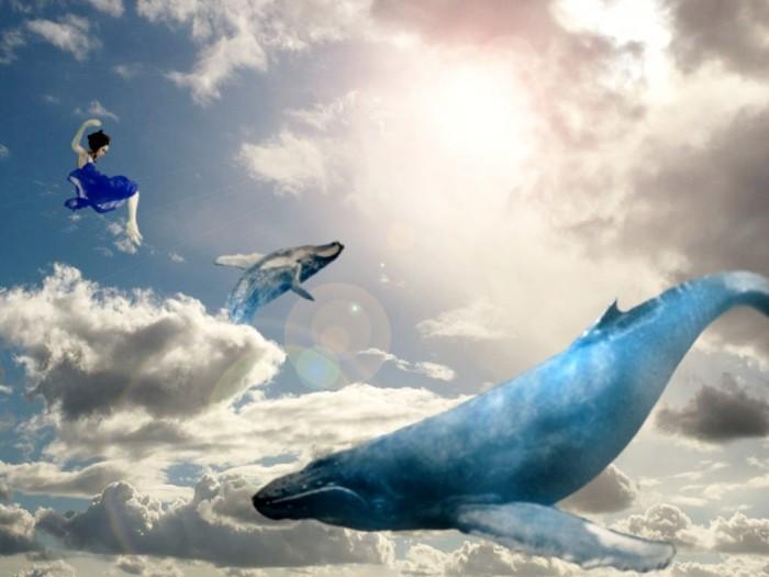 найдётся друг, киты в небе фото биржи копирайтеров