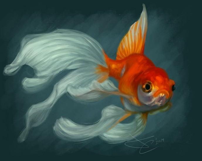 Привет от Золотой Рыбки Или исполненность загаданного запроса