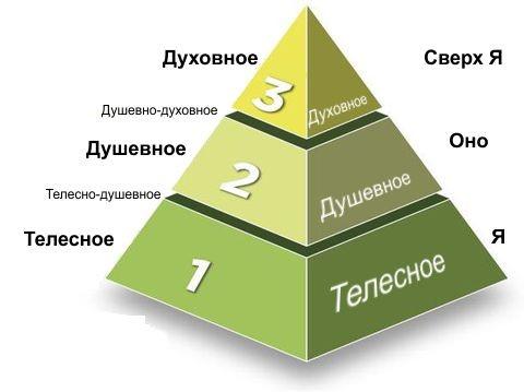 Что такое когнитивный порог в свете сетевого строения мозга, разума и сознания (8)