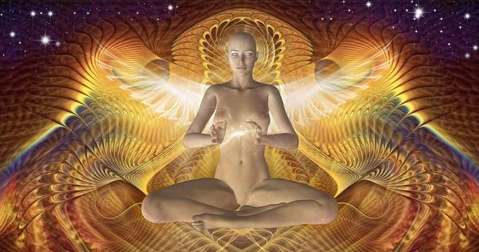 Мудрость человеческого организма