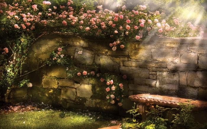 Метафора садовника в психотерапии тревоги