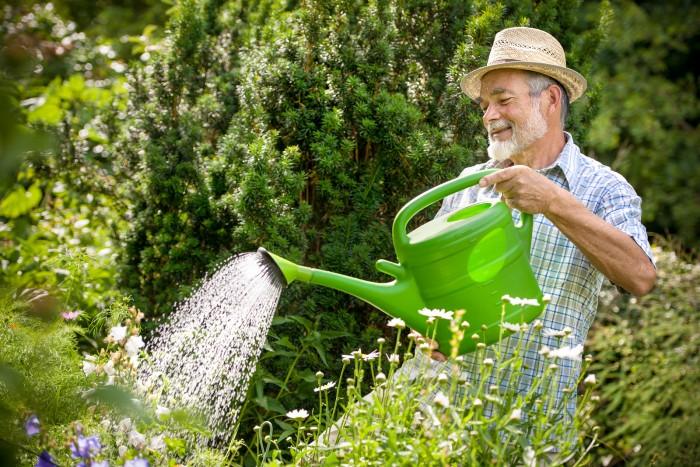 Метафора садовника в психотерапии тревоги (3)