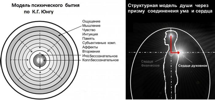 Что такое соединение ума и сердца с точки зрения сетей сознания и когнитивных порогов (8)