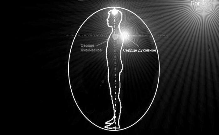 Что такое соединение ума и сердца с точки зрения сетей сознания и когнитивных порогов (10)