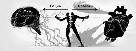 Что такое соединение ума и сердца с точки зрения сетей сознания и когнитивных порогов (11)