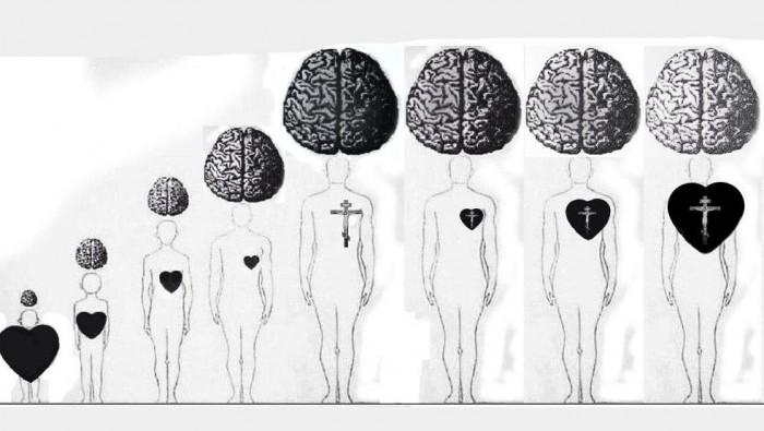 Что такое соединение ума и сердца с точки зрения сетей сознания и когнитивных порогов (7)