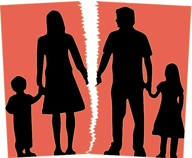 Разводы: кризис семьи или эволюция отношений (4)
