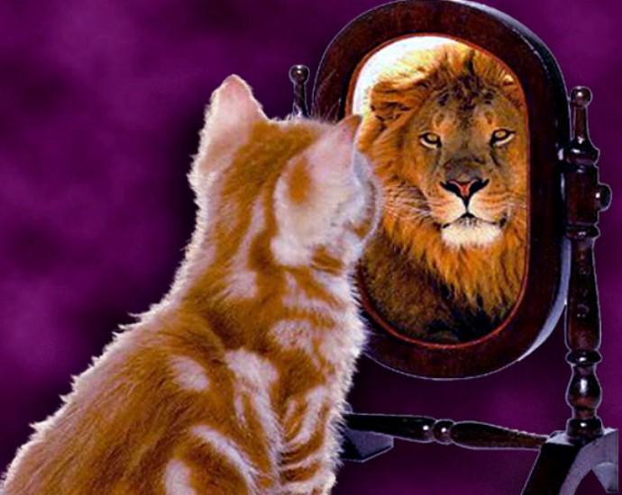 картинка кот в зеркале лев чего формируется