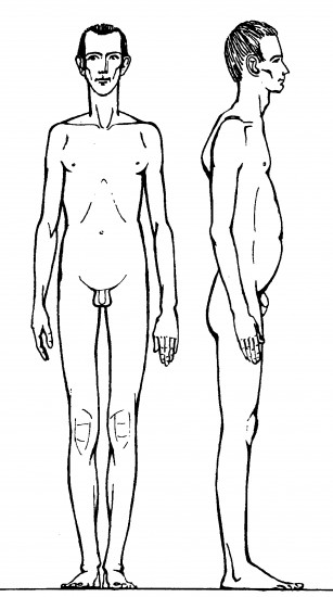 Оральный тип характера и его телесная структура. (2)