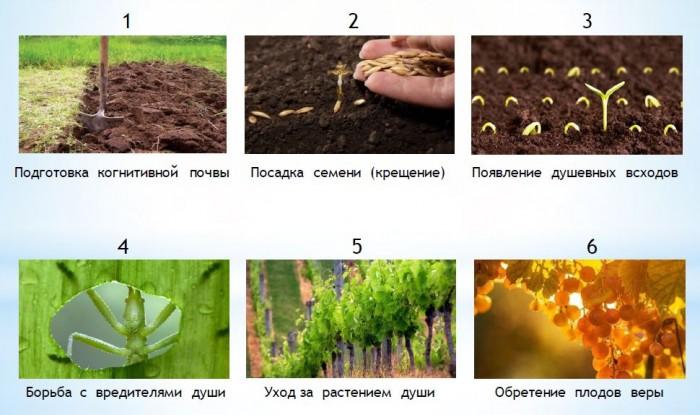 Духовное домостроительство или утраченное знание о  природе и  создании  «двойника» (10)