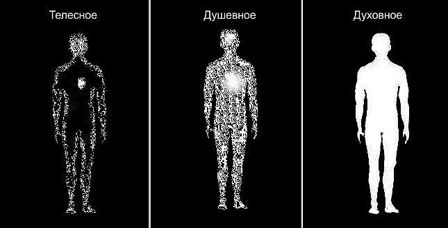 Духовное домостроительство или утраченное знание о  природе и  создании  «двойника» (9)