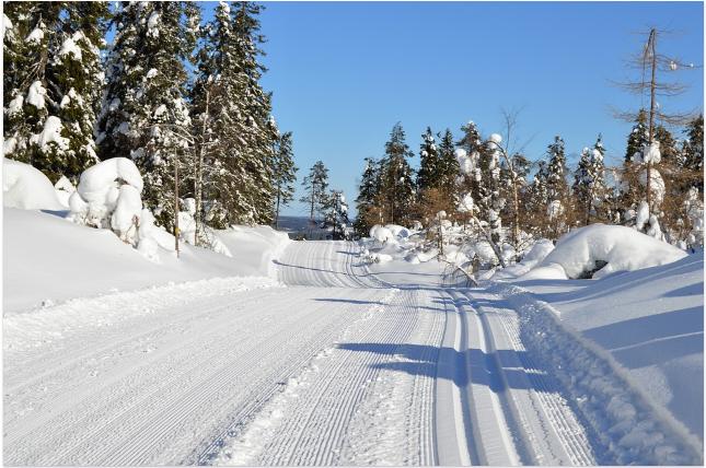 Финский рецепт счастья (9)