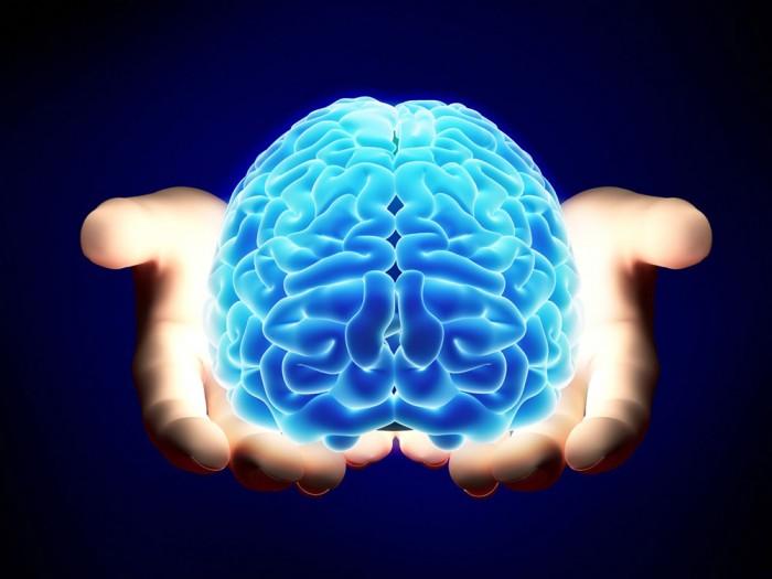 С любовью и заботой о мозге