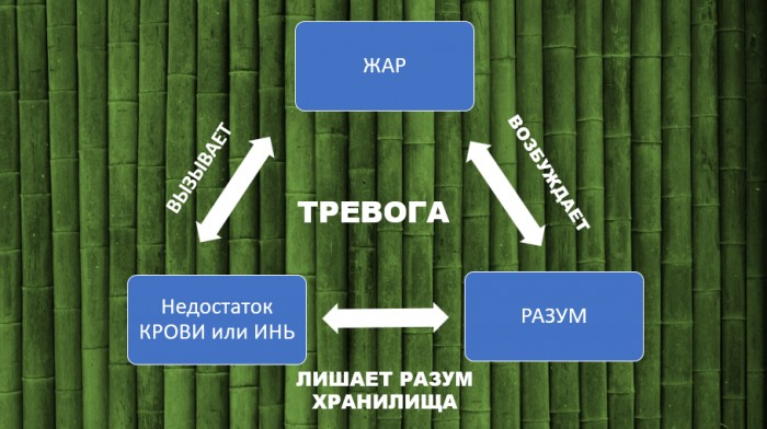 Причины тревоги и ВСД согласно ТКМ (3)