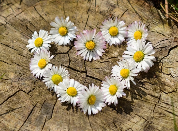 Откуда взять любовь к себе? (2)
