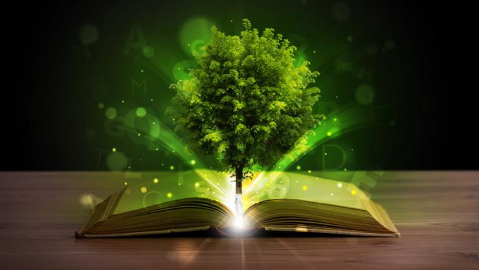 Психологическая стратегия исцеляющая жизненные пути Волшебная психология