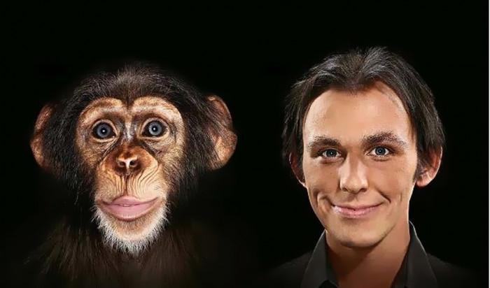 Поведенческие мутации, эволюция поведения и социальные инстинкты у животных