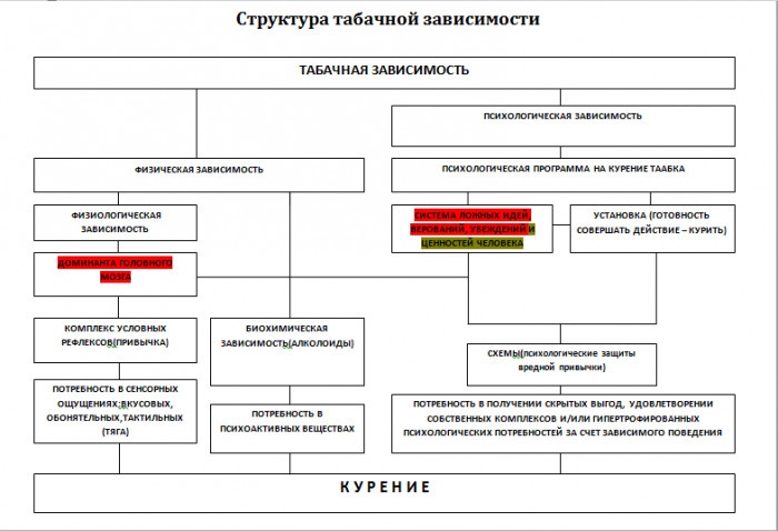 Структура табачной зависимости