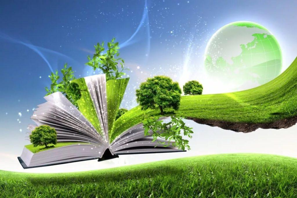 Практика осуществления выбора Две судьбы Сюжетно метафорическая стратегия