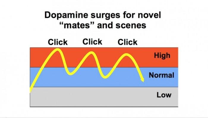 Мужчина часто смотрит порно сайты при постоянном активном сексе с постоянной женщиной