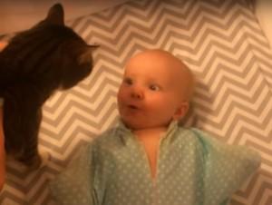 Животные и дети Как испортить доверие к миру